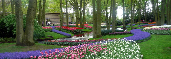 Sightseeing Nature Tour in Brussels